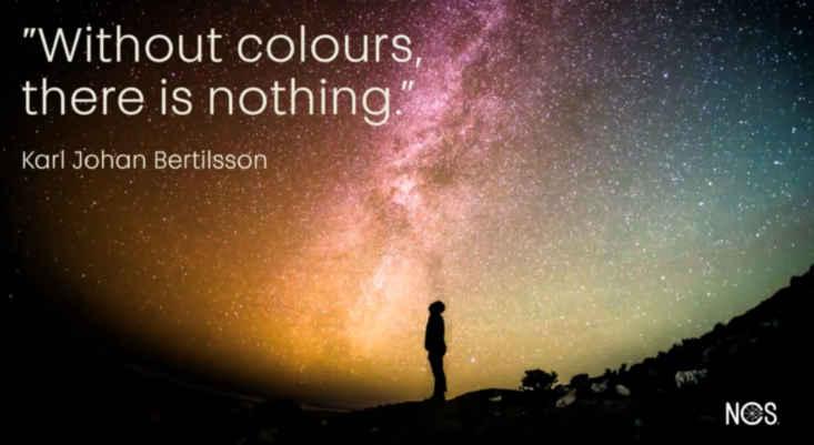 Tendencias en color, sin color no hay nada