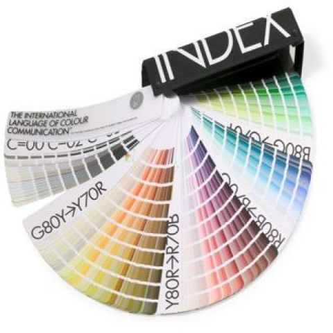 paleta de colores premium